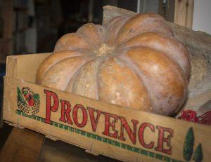 Pumpkin in Provence crate